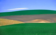 Farmland Southern Canterbury