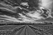 Country Road, Wairarapa