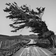 Sandymount Road, Otago Peninsula